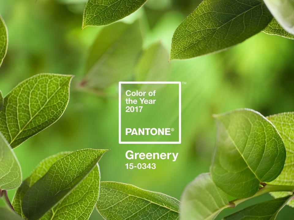 Greenery: die PANTONE-Farbe 2017
